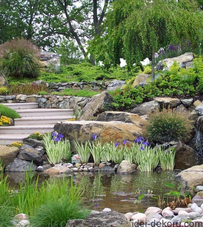 rock gardens and rockeries