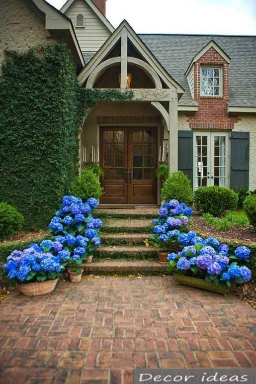 entrance to the house blue flowers