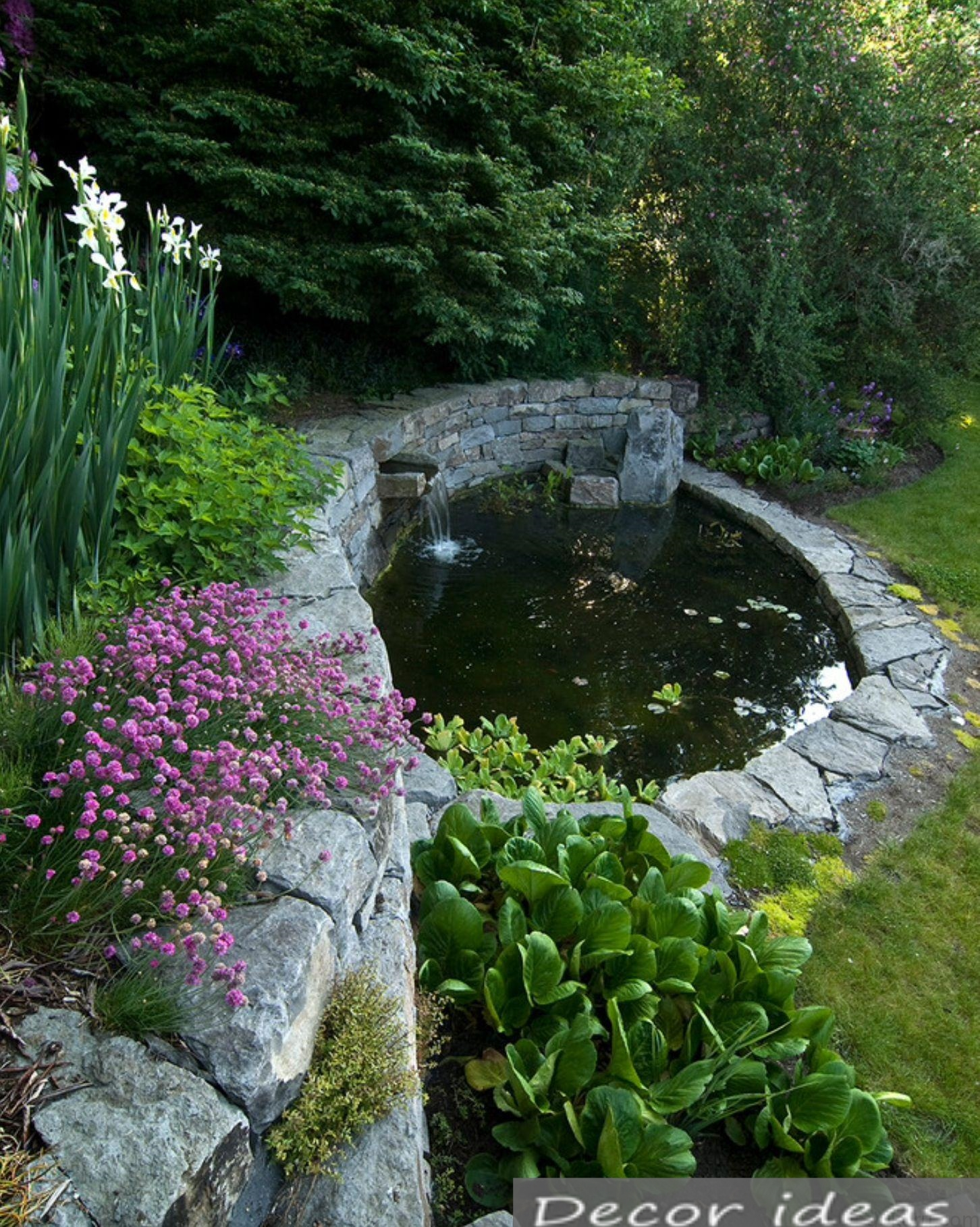 pond stone herb nature waterfall