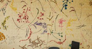 Wallpaper 2021: Lindsay Eidelman's herbarium